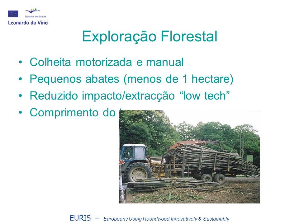EURIS – Europeans Using Roundwood Innovatively & Sustainably Exploração Florestal Colheita motorizada e manual Pequenos abates (menos de 1 hectare) Reduzido impacto/extracção low tech Comprimento do tronco