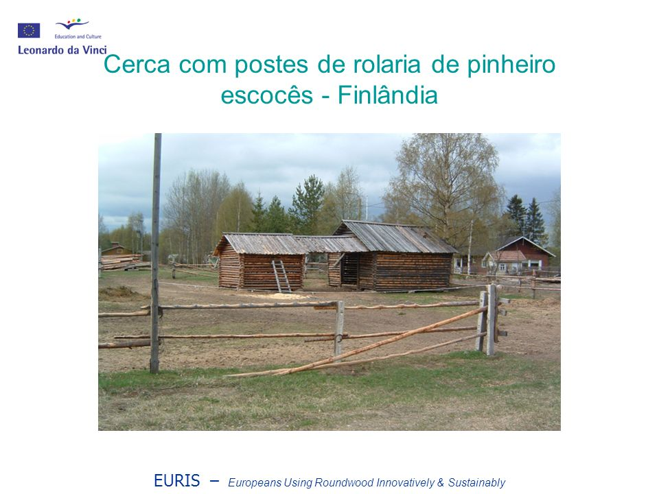 EURIS – Europeans Using Roundwood Innovatively & Sustainably Cerca com postes de rolaria de pinheiro escocês - Finlândia