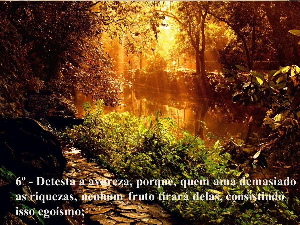 6º - Detesta a avareza, porque, quem ama demasiado as riquezas, nenhum fruto tirará delas, consistindo isso egoísmo;
