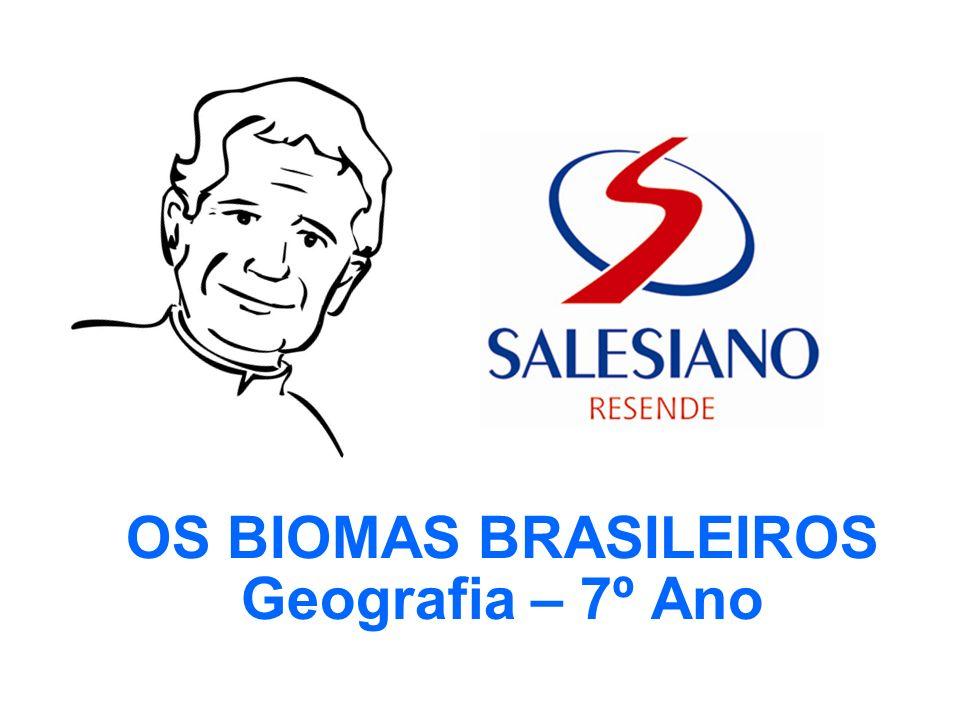 OS BIOMAS BRASILEIROS Geografia – 7º Ano