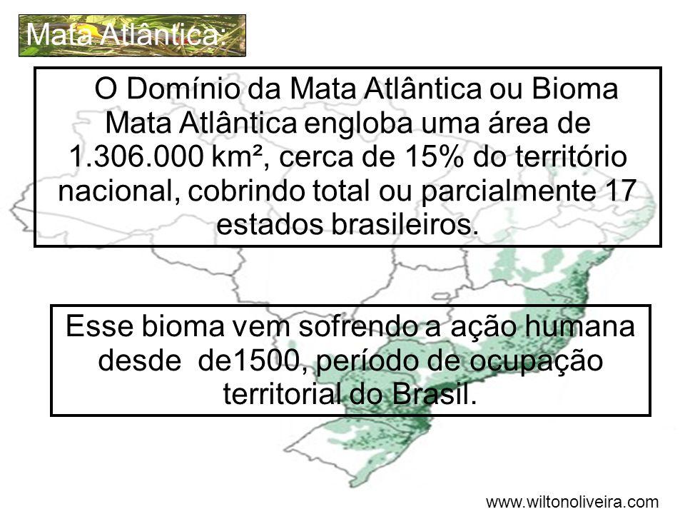 O Domínio da Mata Atlântica ou Bioma Mata Atlântica engloba uma área de 1.306.000 km², cerca de 15% do território nacional, cobrindo total ou parcialm