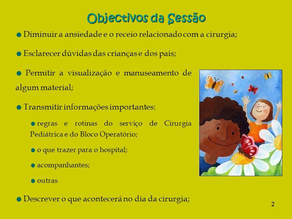2 Objectivos da Sessão Esclarecer dúvidas das crianças e dos pais; Permitir a visualização e manuseamento de algum material; Transmitir informações im