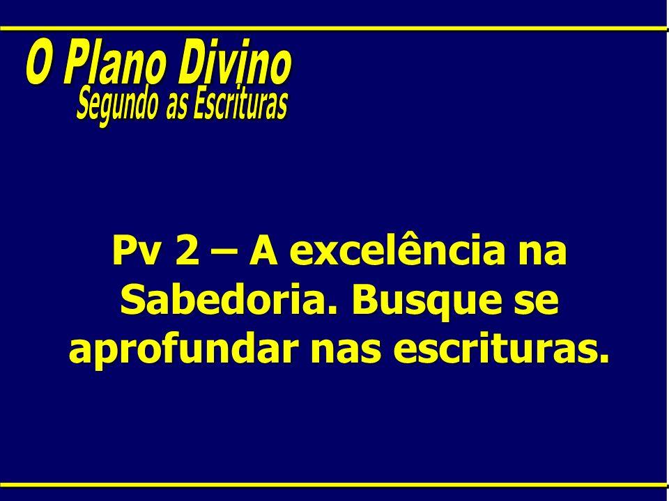 Pv 2 – A excelência na Sabedoria. Busque se aprofundar nas escrituras.