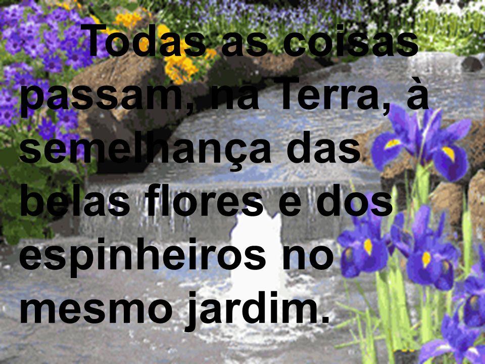 Todas as coisas passam, na Terra, à semelhança das belas flores e dos espinheiros no mesmo jardim.