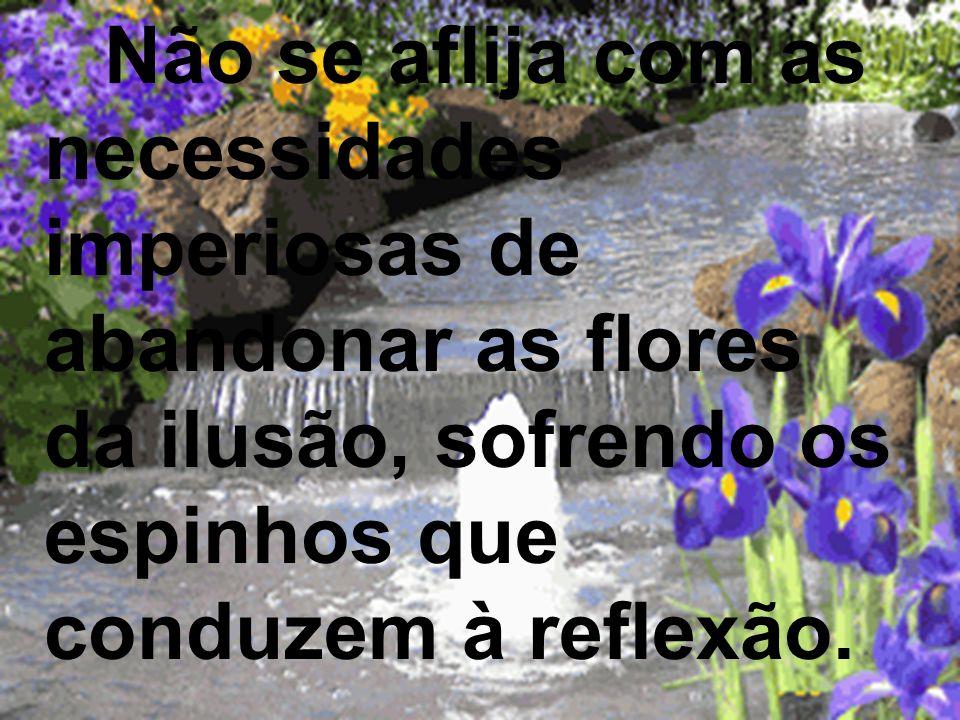 Não se aflija com as necessidades imperiosas de abandonar as flores da ilusão, sofrendo os espinhos que conduzem à reflexão.