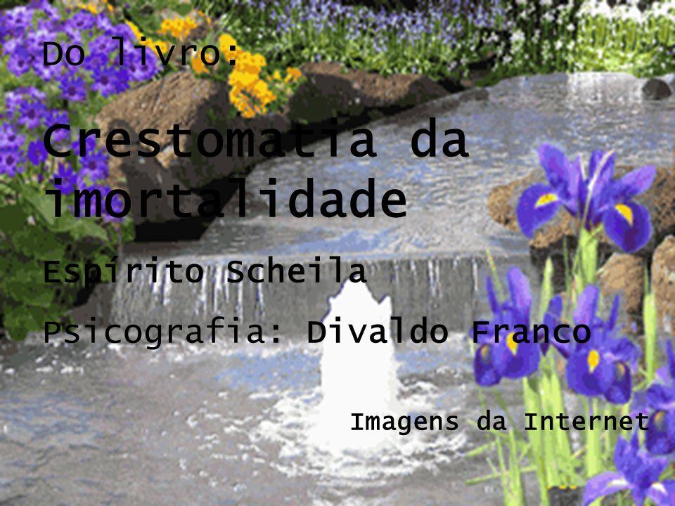 Do livro: Crestomatia da imortalidade Espírito Scheila Psicografia: Divaldo Franco Imagens da Internet