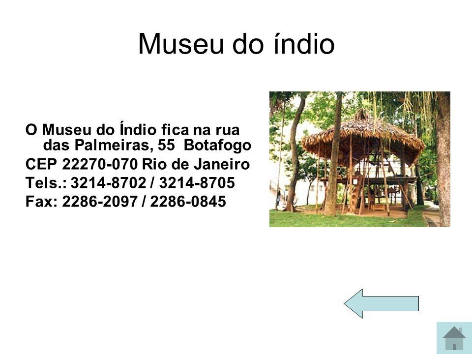 Museu do índio O Museu do Índio fica na rua das Palmeiras, 55 Botafogo CEP 22270-070 Rio de Janeiro Tels.: 3214-8702 / 3214-8705 Fax: 2286-2097 / 2286