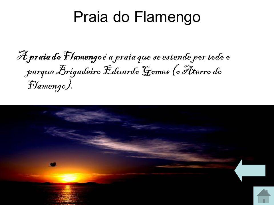 Praia do Flamengo A praia do Flamengo é a praia que se estende por todo o parque Brigadeiro Eduardo Gomes (o Aterro do Flamengo).
