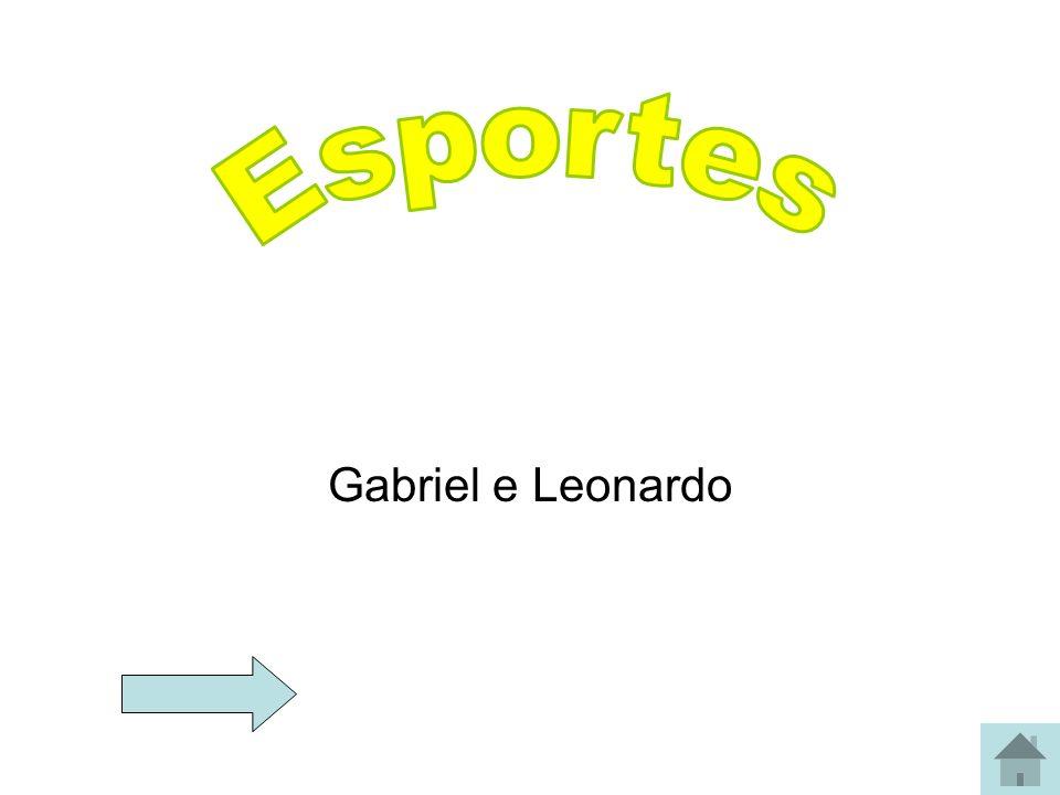 Gabriel e Leonardo