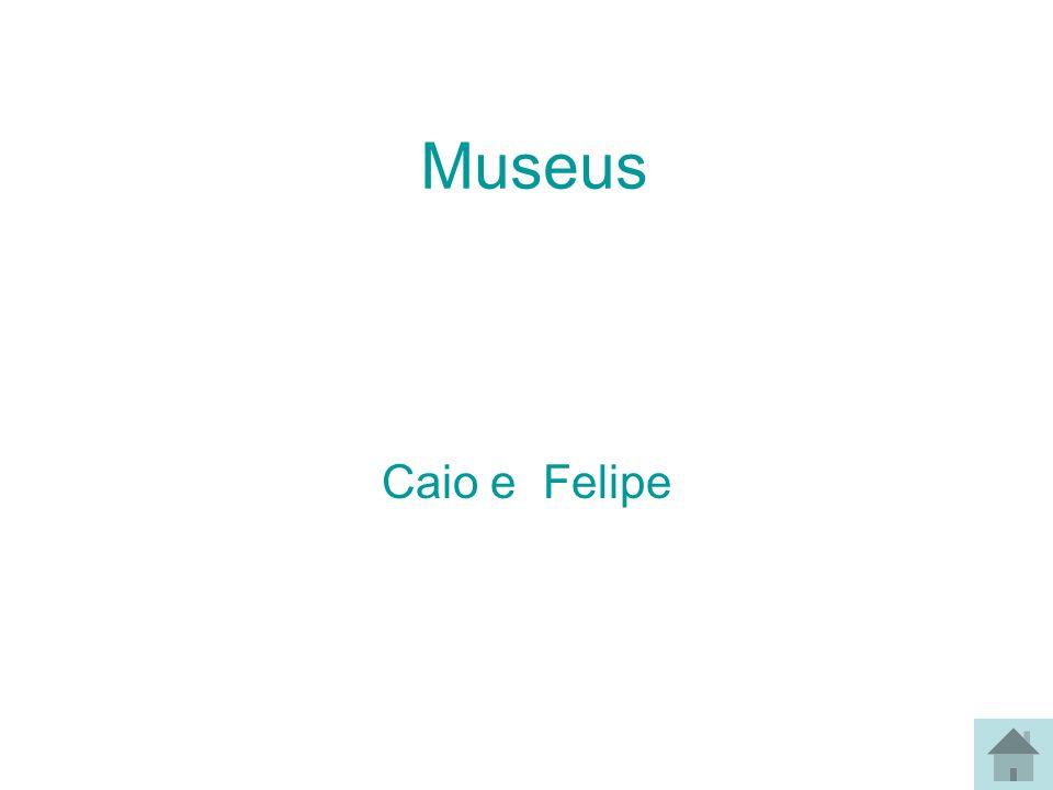 Museu Histórico Nacional Museu Nacional do Rio de janeiro Museu do índio Museu Villa Lobos Museu do Açude Museu do Folclore Museu da República Museu de Arte Moderna