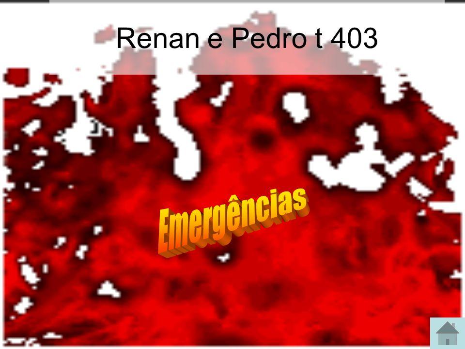 Renan e Pedro t 403