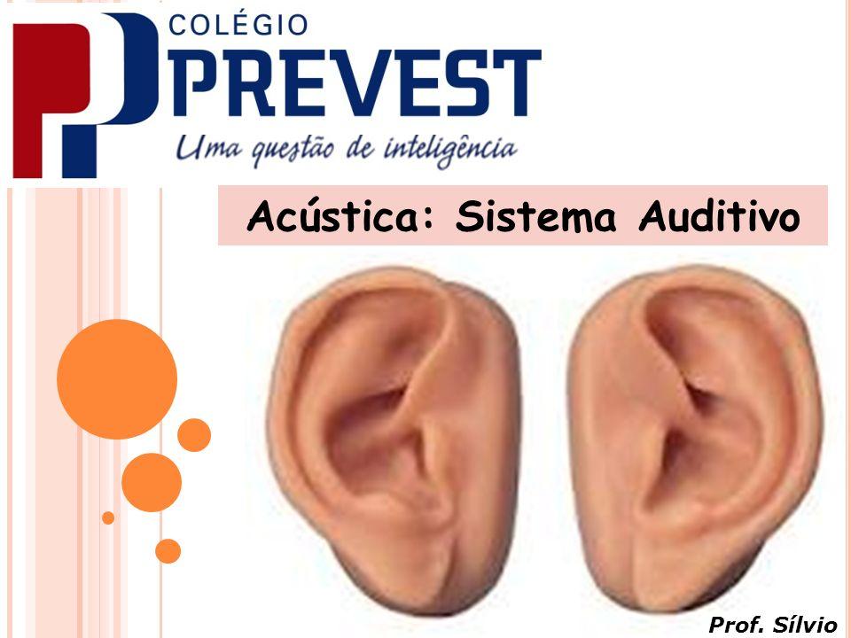 Acústica: Sistema Auditivo Prof. Sílvio