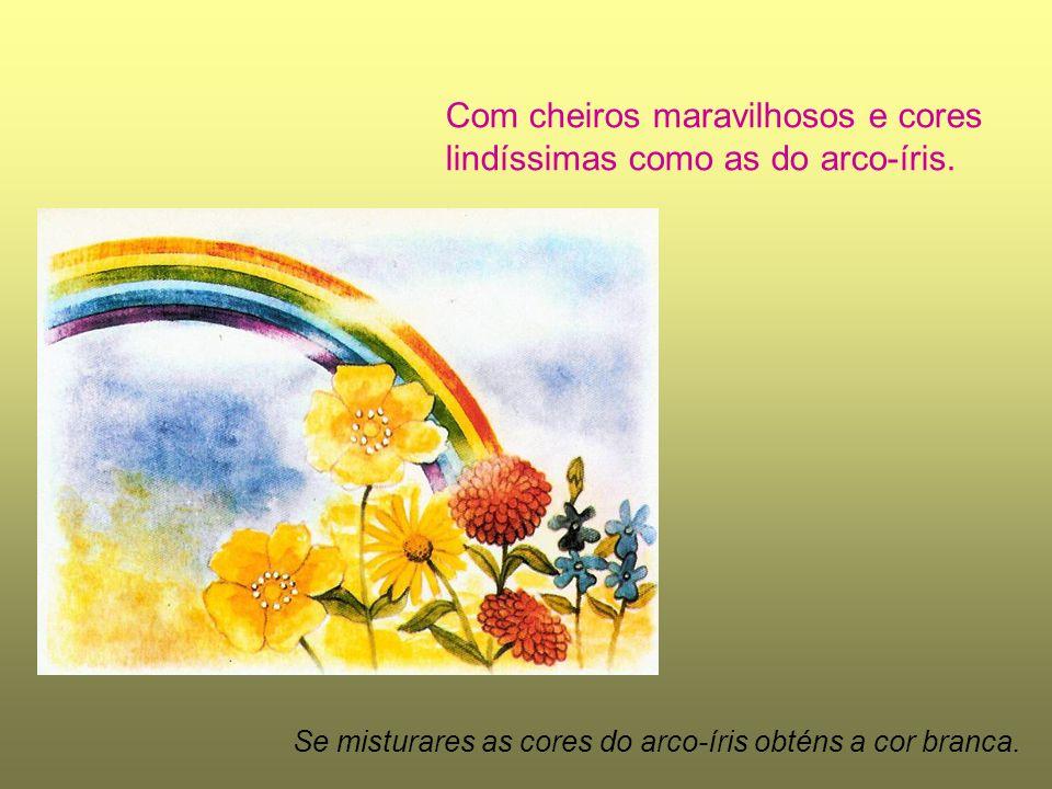 Com cheiros maravilhosos e cores lindíssimas como as do arco-íris. Se misturares as cores do arco-íris obténs a cor branca.