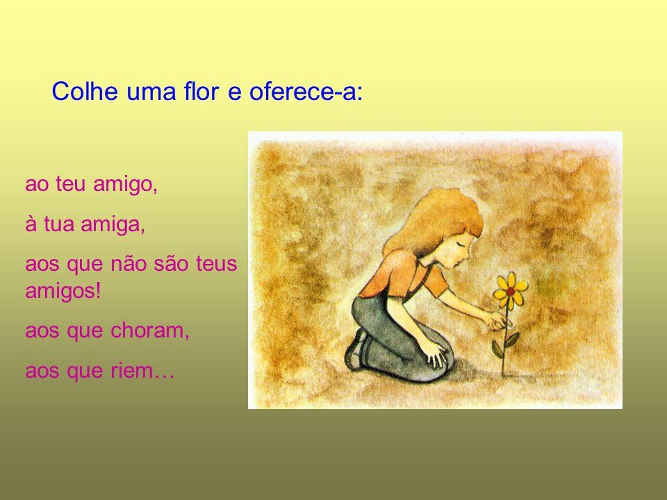 Colhe uma flor e oferece-a: ao teu amigo, à tua amiga, aos que não são teus amigos! aos que choram, aos que riem…