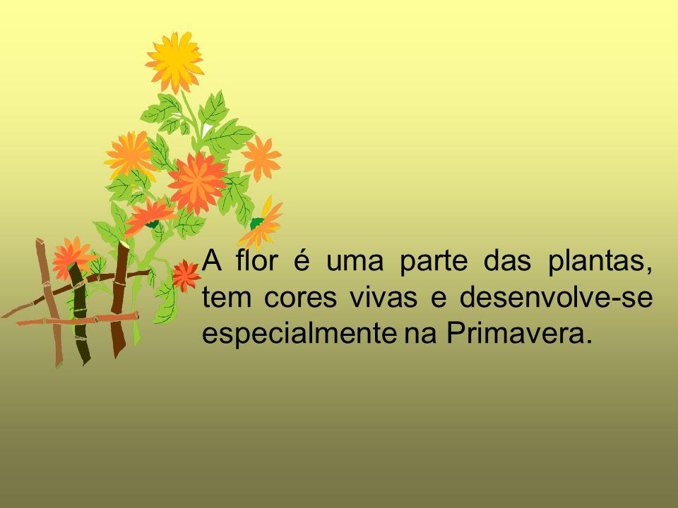 A flor é uma parte das plantas, tem cores vivas e desenvolve-se especialmente na Primavera.