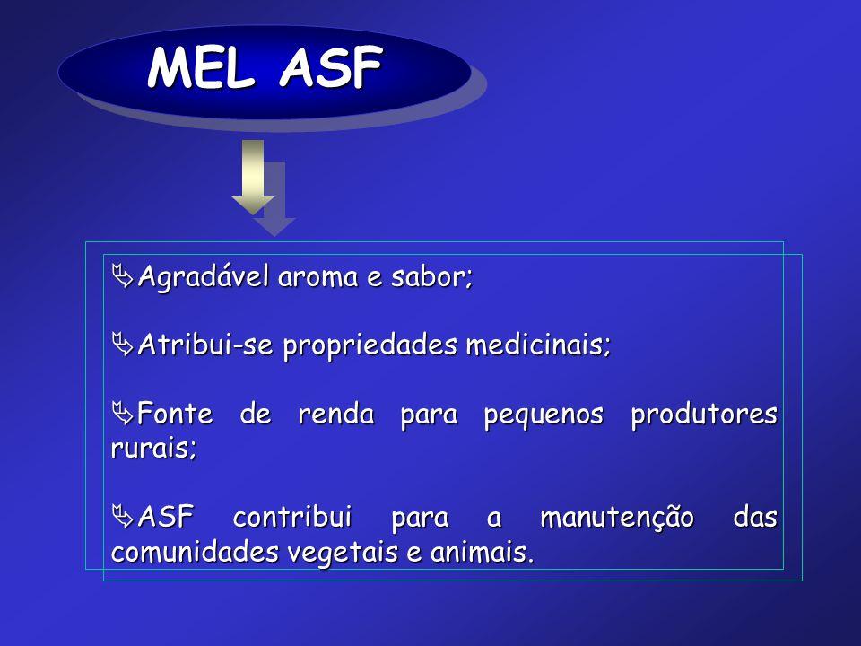 MEL ASF Agradável aroma e sabor; Agradável aroma e sabor; Atribui-se propriedades medicinais; Atribui-se propriedades medicinais; Fonte de renda para