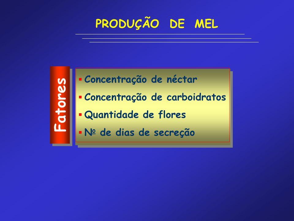 Fatores PRODUÇÃO DE MEL Concentração de néctar Concentração de carboidratos Quantidade de flores N o de dias de secreção