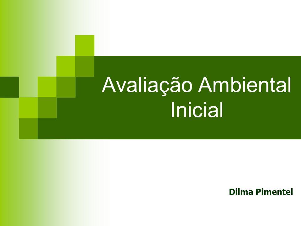 Avaliação Ambiental Inicial Dilma Pimentel
