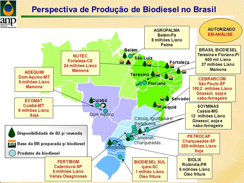 Perspectiva de Produção de Biodiesel no Brasil AGROPALMA Belém-Pa 8 milhões L/ano Palma ECOMAT Cuiabá-MT 8 milhões L/ano Soja PETROCAP Charqueadas-SP 300 milhões L/ano Soja SOYMINAS Cassia-MG 12 milhões L/ano Girassol, soja e nabo-forrageiro BRASIL BIODIESEL Teresina e Floriano-PI 600 mil L/ano 27 milhões L/ano Mamona AUTORIZADO EM ANÁLISE BIODIESEL SUL Içara-SC 1 milhão L/ano Óleo fritura ADEQUIM Dom Aquino-MT 6 milhões L/ano Mamona FERTIBOM Catanduva-SP 6 milhões L/ano Várias Oleaginosas BIOLIX Rolândia-PR 9 milhões L/ano Óleo fritura CEBRARCOM São Paulo-SP 100,2 milhões L/ano Girassol, soja e nabo-forrageiro NUTEC Fortaleza-CE 24 milhões L/ano Mamona