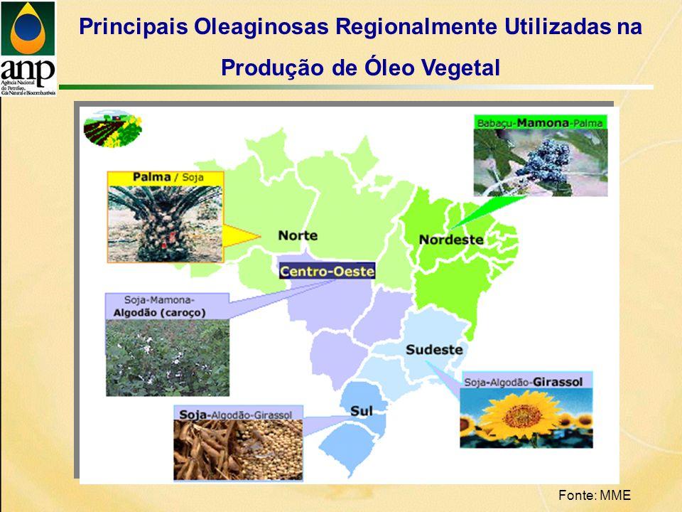 Principais Oleaginosas Regionalmente Utilizadas na Produção de Óleo Vegetal Fonte: MME