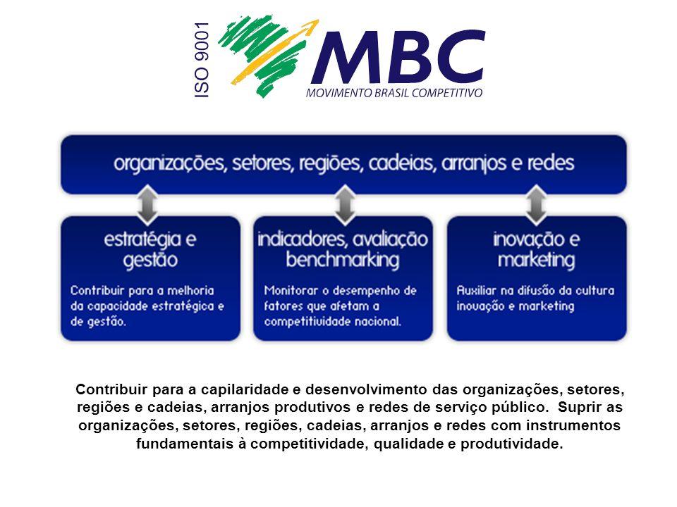 Contribuir para a capilaridade e desenvolvimento das organizações, setores, regiões e cadeias, arranjos produtivos e redes de serviço público. Suprir