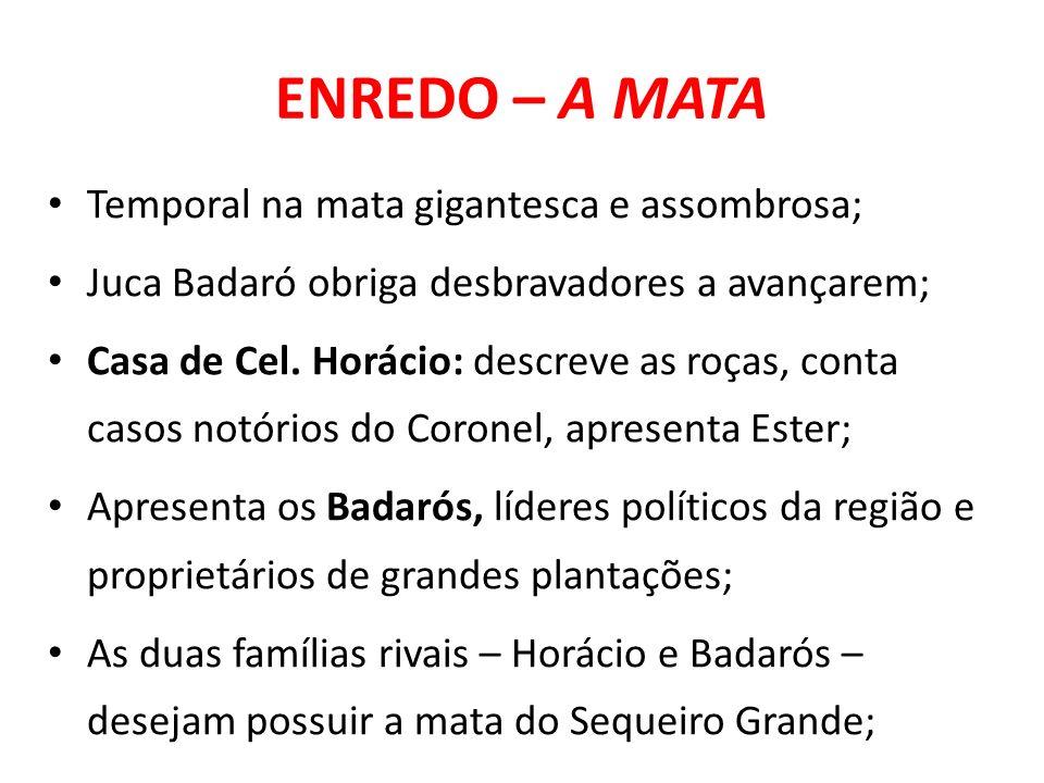 ENREDO – A MATA Temporal na mata gigantesca e assombrosa; Juca Badaró obriga desbravadores a avançarem; Casa de Cel. Horácio: descreve as roças, conta