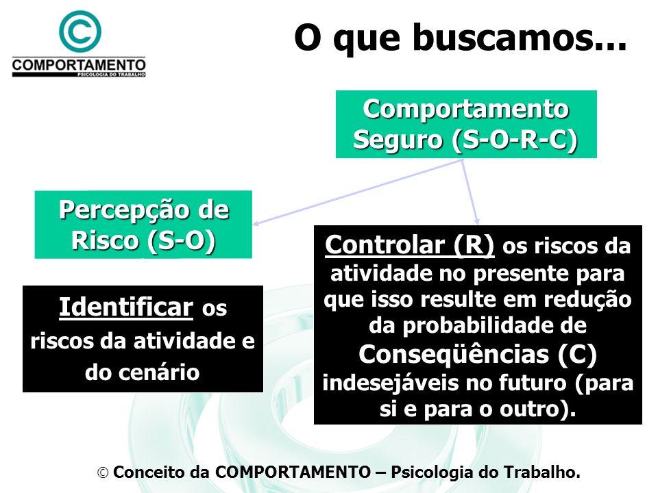 O que buscamos... Comportamento Seguro (S-O-R-C) Percepção de Risco (S-O) Identificar os riscos da atividade e do cenário Controlar (R) os riscos da a