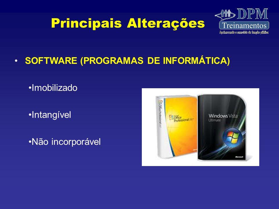 SOFTWARE (PROGRAMAS DE INFORMÁTICA) Imobilizado Intangível Não incorporável Principais Alterações