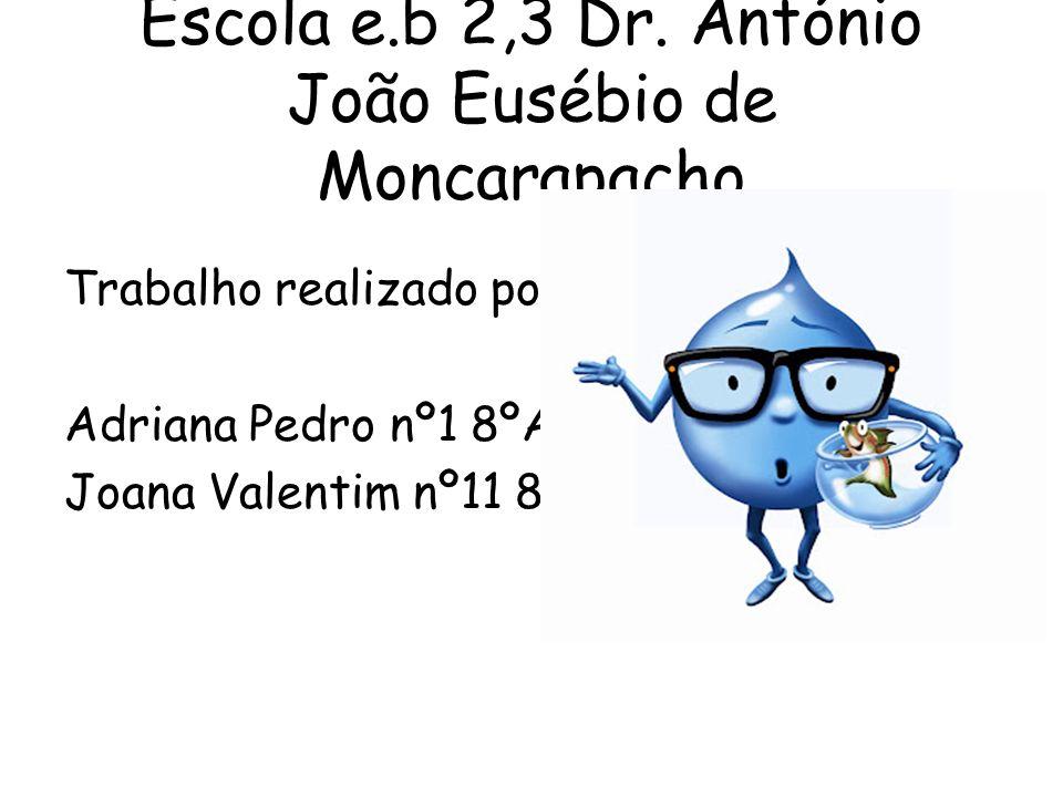 Escola e.b 2,3 Dr. António João Eusébio de Moncarapacho Trabalho realizado por: Adriana Pedro nº1 8ºA Joana Valentim nº11 8ºA