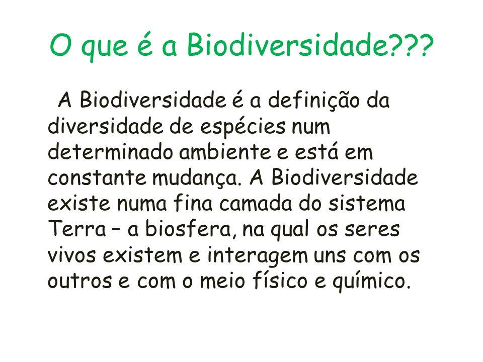 O que é a Biodiversidade??? A Biodiversidade é a definição da diversidade de espécies num determinado ambiente e está em constante mudança. A Biodiver