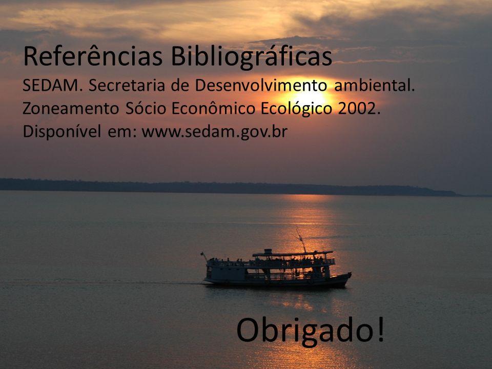 Referências Bibliográficas SEDAM. Secretaria de Desenvolvimento ambiental. Zoneamento Sócio Econômico Ecológico 2002. Disponível em: www.sedam.gov.br