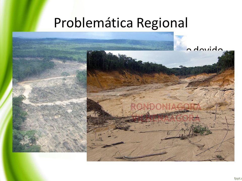 Problemática Regional Avanço dos processos de antropização devido ao avanço da agropecuária extensiva; Gestão das águas deficiêntes ou inexistente na