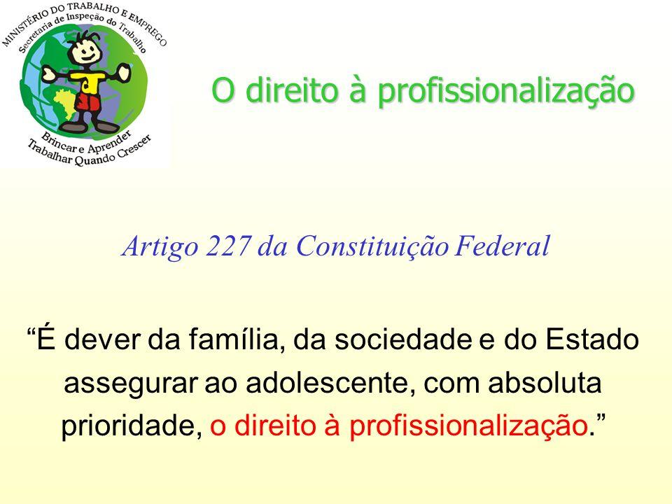 O direito à profissionalização Artigo 227 da Constituição Federal É dever da família, da sociedade e do Estado assegurar ao adolescente, com absoluta prioridade, o direito à profissionalização.