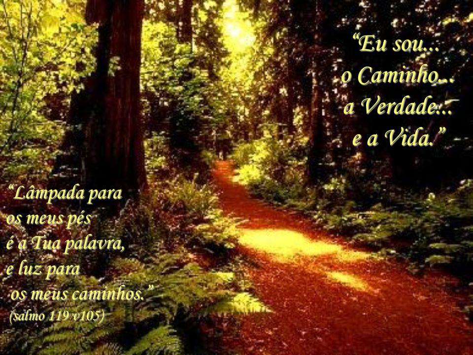 Lâmpada para os meus pés é a Tua palavra, e luz para os meus caminhos.