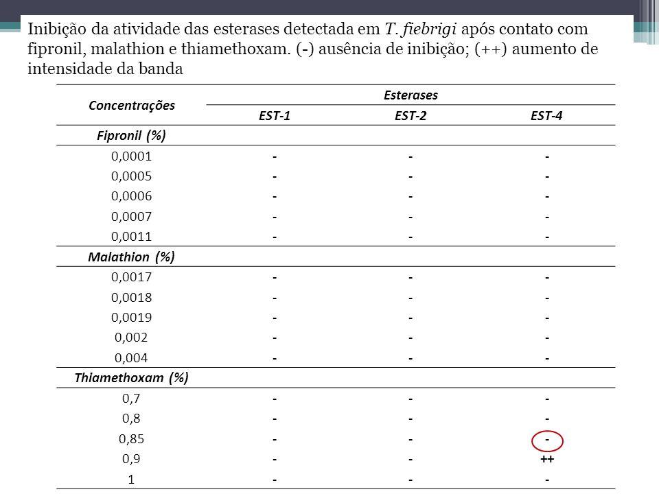 Concentrações Esterases EST-1EST-2EST-4 Fipronil (%) 0,0001--- 0,0005--- 0,0006--- 0,0007--- 0,0011--- Malathion (%) 0,0017--- 0,0018--- 0,0019--- 0,0