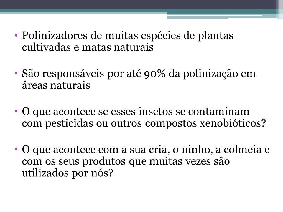 Relatos de casos de sumiço de abelhas nativas sem ferrão – Paraná Será que os pesticidas, em especial inseticidas podem estar relacionados com esse sumiço.