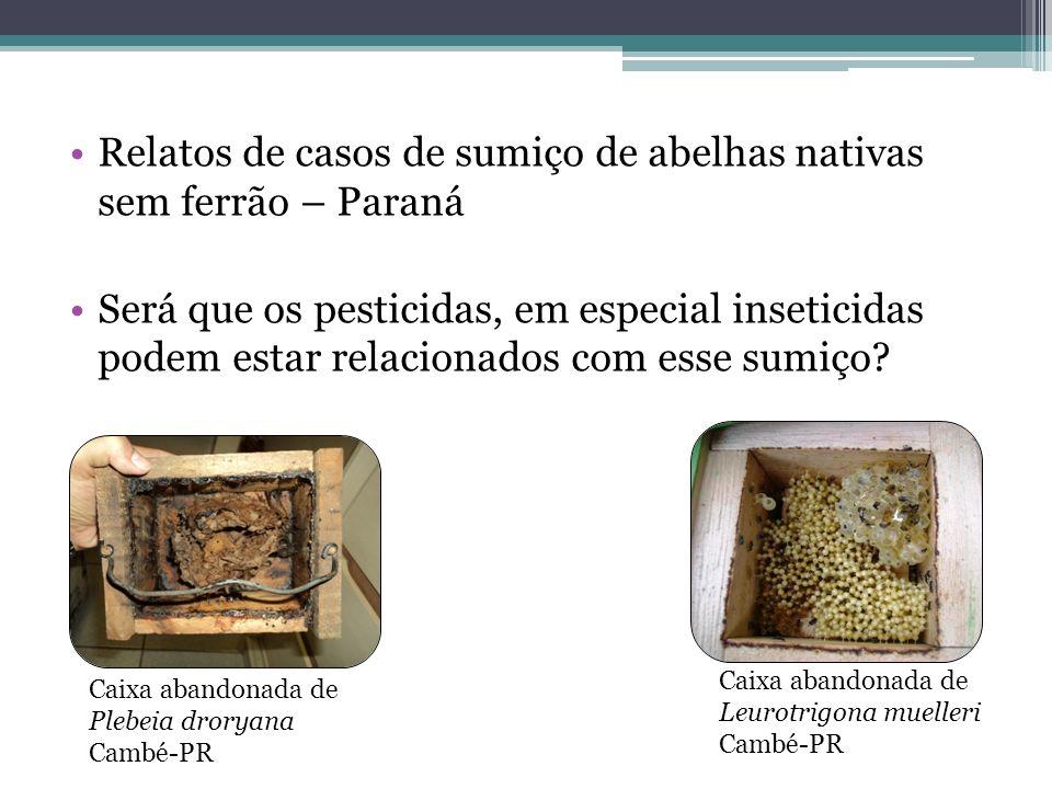 Relatos de casos de sumiço de abelhas nativas sem ferrão – Paraná Será que os pesticidas, em especial inseticidas podem estar relacionados com esse su
