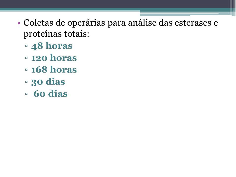 Coletas de operárias para análise das esterases e proteínas totais: 48 horas 120 horas 168 horas 30 dias 60 dias