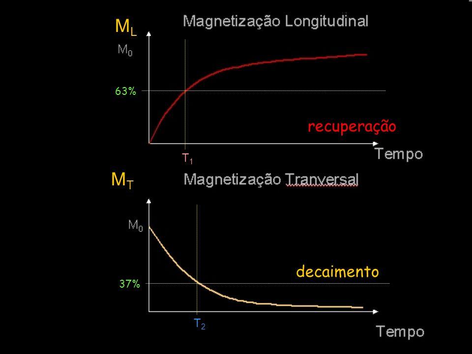 MLML MTMT decaimento recuperação 63% T1T1 37% T2T2
