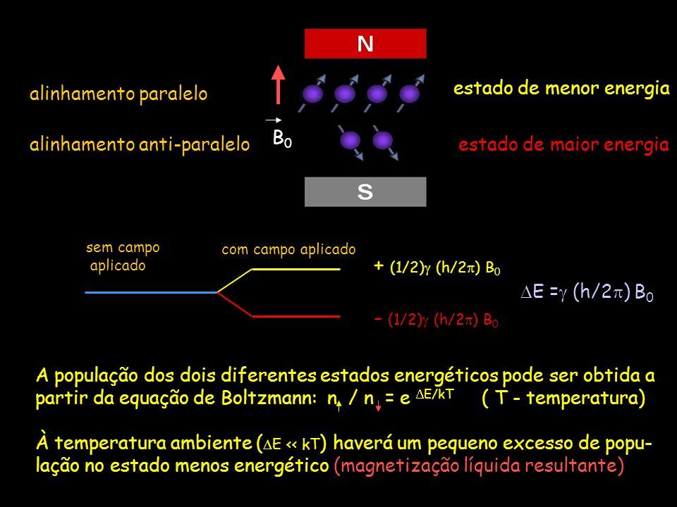 Magnetização longitudinal M L Vetor Resultante