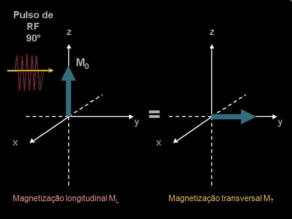 Magnetização transversal M T Magnetização longitudinal M L