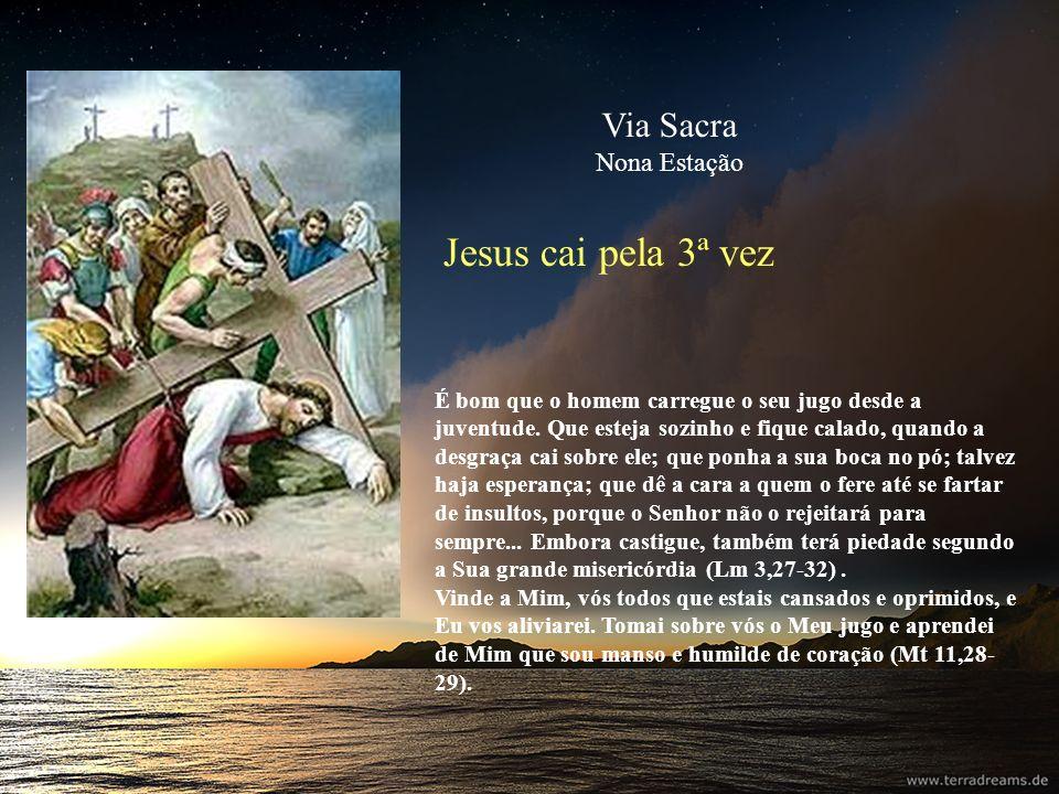 Jesus cai pela 3ª vez É bom que o homem carregue o seu jugo desde a juventude. Que esteja sozinho e fique calado, quando a desgraça cai sobre ele; que