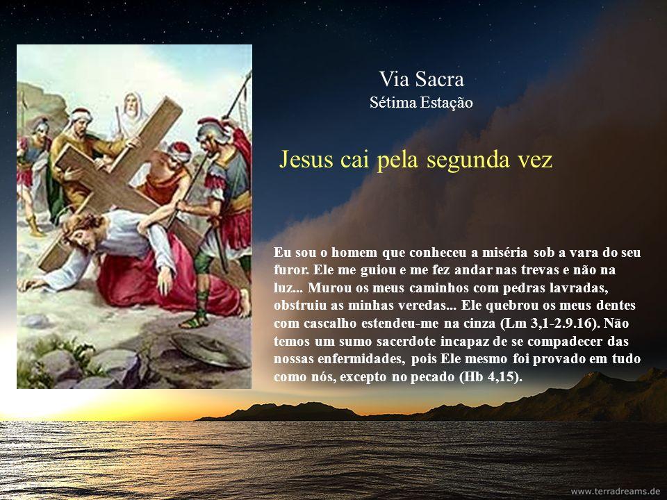 Jesus cai pela segunda vez Eu sou o homem que conheceu a miséria sob a vara do seu furor. Ele me guiou e me fez andar nas trevas e não na luz... Murou