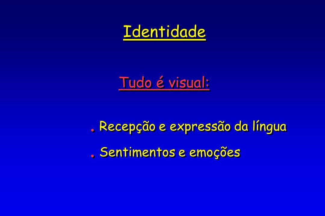 Identidade Tudo é visual:.Recepção e expressão da língua.