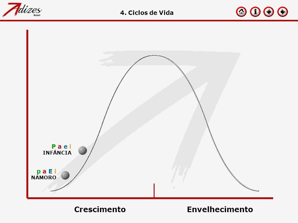 p a E i NAMORO 4. Ciclos de Vida P a e i INFÂNCIA CrescimentoEnvelhecimento