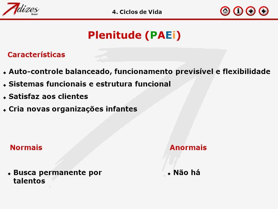 Plenitude (PAEi) Características u Auto-controle balanceado, funcionamento previsível e flexibilidade u Sistemas funcionais e estrutura funcional u Sa