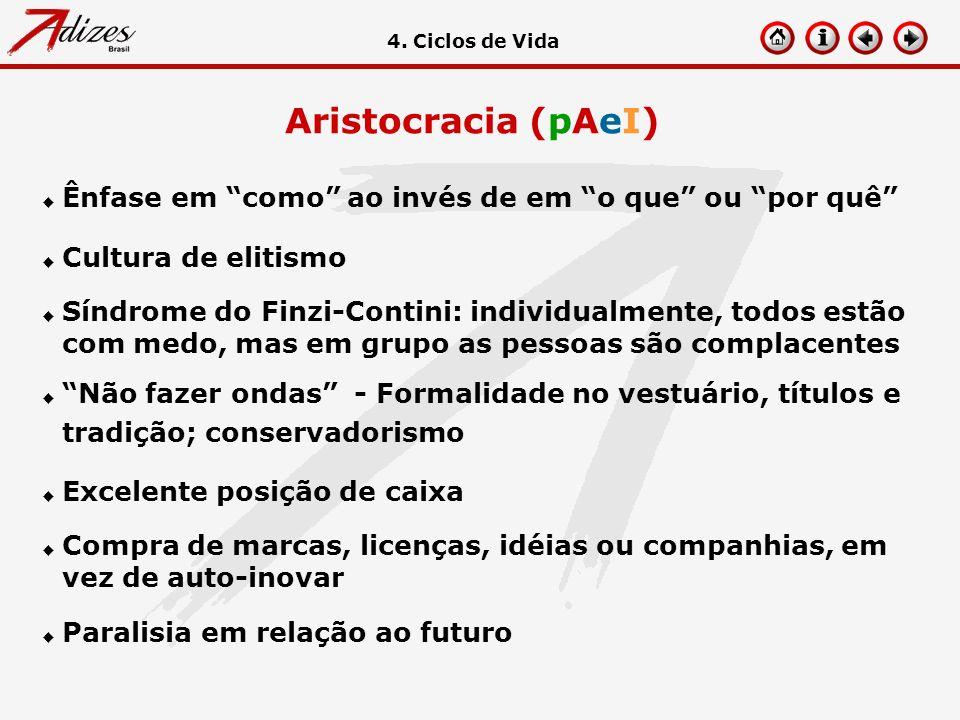 Aristocracia (pAeI) u Ênfase em como ao invés de em o que ou por quê u Cultura de elitismo u Síndrome do Finzi-Contini: individualmente, todos estão c
