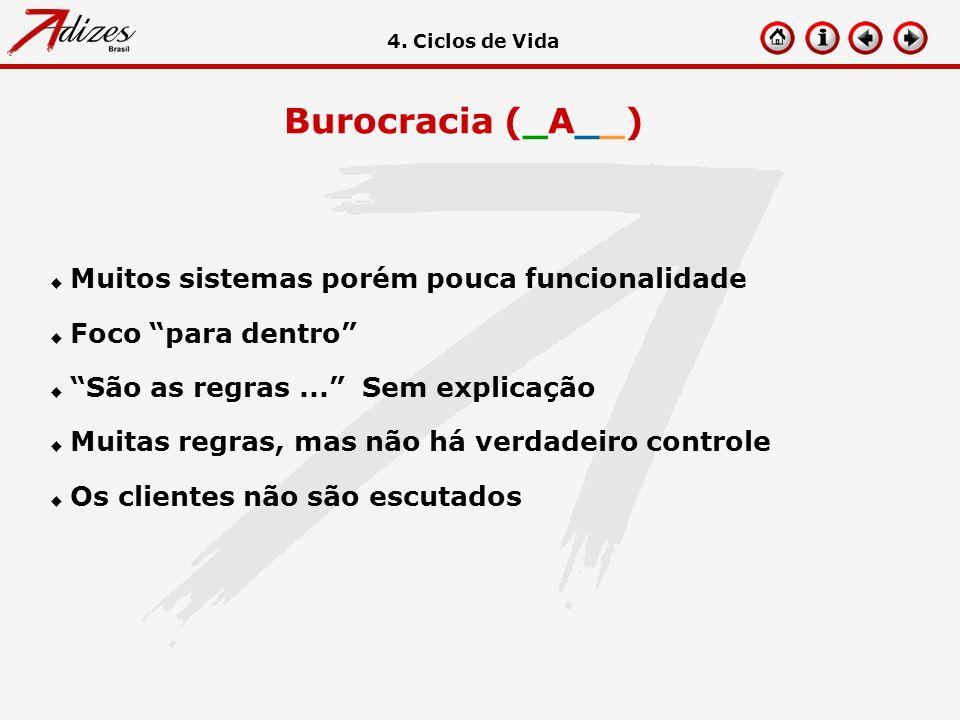 Burocracia (_A__) u Muitos sistemas porém pouca funcionalidade u Foco para dentro u São as regras... Sem explicação u Muitas regras, mas não há verdad
