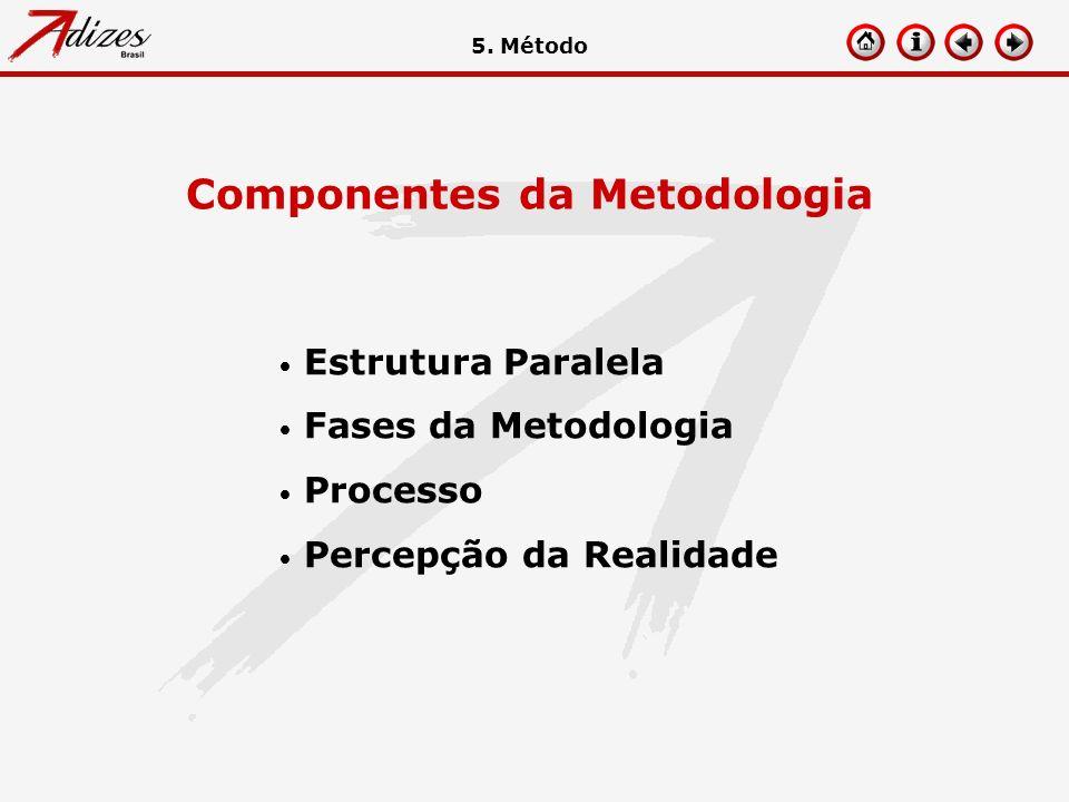 Estrutura Paralela Fases da Metodologia Processo Percepção da Realidade Componentes da Metodologia 5. Método