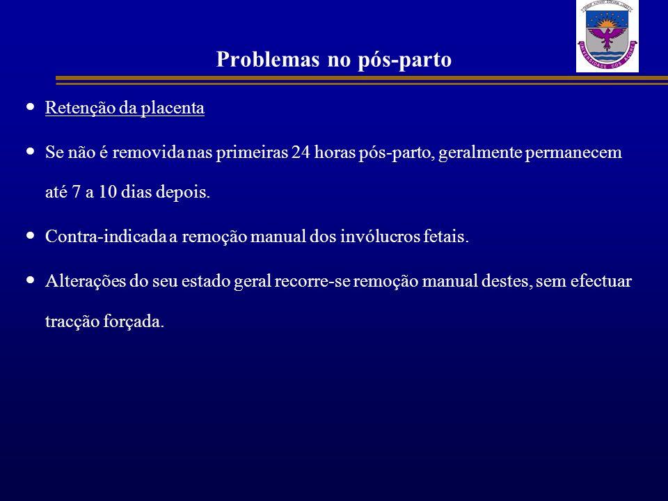 Problemas no pós-parto Retenção da placenta Se não é removida nas primeiras 24 horas pós-parto, geralmente permanecem até 7 a 10 dias depois. Contra-i